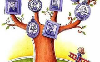 Генетическое древо семьи. Как можно представить генеалогическое дерево. Как построить родословную схему