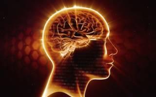 Интересные факты о памяти человека. Любопытные факты о памяти