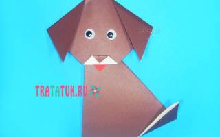 Модульное оригами собака схема сборки пошагово. Оригами собачка из бумаги поэтапно