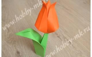 Оригами из бумаги тюльпан: пошаговая инструкция. Как сделать тюльпан из бумаги своими руками поэтапно: пошаговая инструкция со схемами, фото и видео