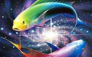 Как можно влюбить в льва мужчину рыбу. Как ведет себя влюбленный мужчина Рыбы? Как завоевать любовь мужчины-Рыбы