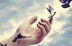 Прощать обиды любимому человеку. Как простить обиду и отпустить человека: советы психологов
