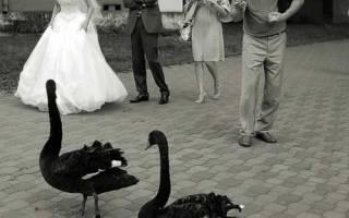 Ремонт рваных дыр на кружевном свадебном платье. Порвать или испачкать свадебное платье приметы недобрые