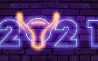 Статусы про наступающий новый год. Лучшие новогодние статусы про Новый год: оригинально и весело