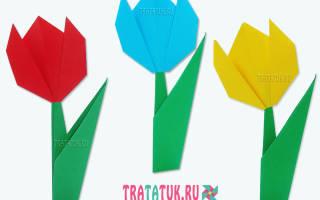 Тюльпаны в технике оригами. Как сделать тюльпан из бумаги своими руками поэтапно: пошаговая инструкция со схемами, фото и видео