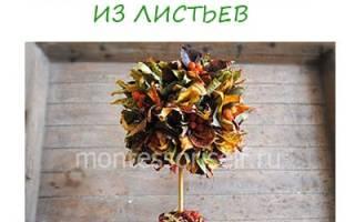 Топиарий Осеннее дерево. Мастер-класс с пошаговыми фото