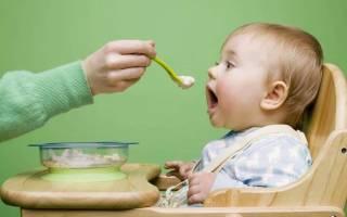 Что делать кормящей грудью. Питание ребенка до года: как совместить прикорм и кормление грудью? Правильное прикладывание – основа дальнейшего успеха