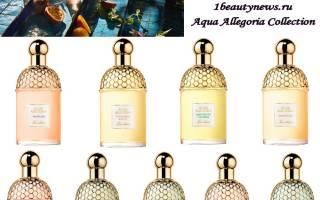 Женская парфюмерия новинки. Aqua Allegoria Mandarine-Basilic от Guerlain. Новый аромат от GUERLAIN