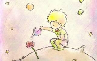 Эссе мы все родом из детства. «Все мы родом из детства». Любимые цитаты из Маленького принца»»