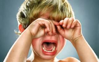 Истерики у ребенка (2 года). Детские истерики: что делать? Как справиться с истерикой у ребенка? Эффективные советы психолога