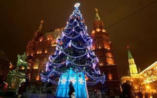 История появления елки на новый год. Традиции Рождества. Рождественская ель