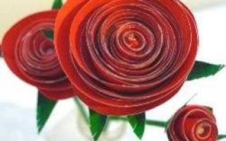 Объемная роза из бумаги оригами. Варианты сборки розы в технике оригами. Оригами роза: пошаговый мастер-класс с фотографиями