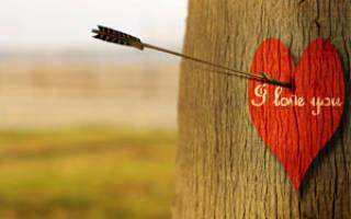 Чтобы привлечь любовь в жизнь. Самые распространенные причины. Как привлечь любовь мужчины или женщины