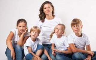 Как оформить матери-одиночке статус многодетной семьи. Что положено матерям одиночкам: пособия, выплаты, льготы, субсидии