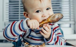 Почему ребенок не ест мясо и что делать в сложившейся ситуации? Дети-вегетарианцы