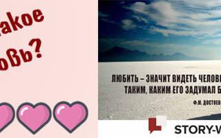 Что такое любовь: кратко и ясно своими словами о самом главном. Любовь