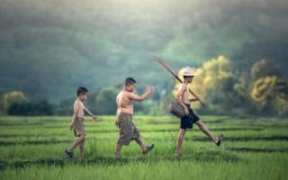 Как узнать статус многодетной семьи. Как получить статус многодетной семьи: документы и порядок оформления