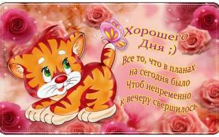 Хорошего дня любовнице. Пожелания хорошего дня своими словами