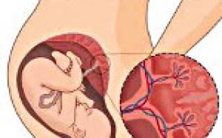 Плацента созревает быстрее. Преждевременное созревание плаценты: причины, симптомы и особенности лечения. Как диагностировать и лечить преждевременное созревание плаценты