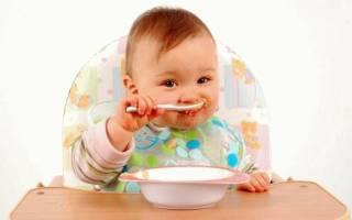Первый прикорм ребенка: когда и с чего начать. Когда и с чего начинать первый прикорм, как правильно вводить новые продукты: основы, советы и правила. Когда можно вводить прикорм