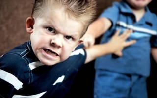 Агрессия у ребенка 4 лет советы психолога. Агрессивный ребенок: избалованность или крик о помощи? Социальные предпосылки агрессивности