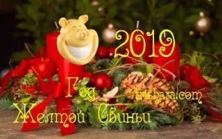 Композиция из веток на новый год. Идеи новогодних композиций