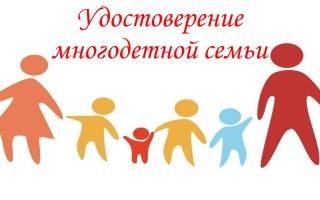 Как получить удостоверение многодетной семьи в московской области