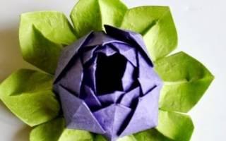 Как сделать лотос оригами пошаговая инструкция. Как сделать лотос из бумаги своими руками поэтапно. Как испечь печенье в форме лотоса