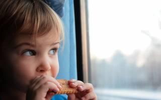 Чем кормить малыша в поезде. Пять советов о том, чем кормить ребенка в поезде